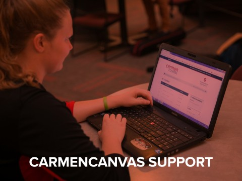 CarmenCanvas support button
