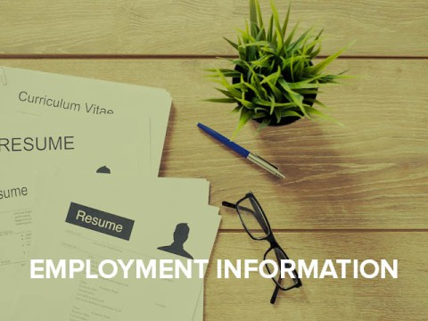 Employment information button