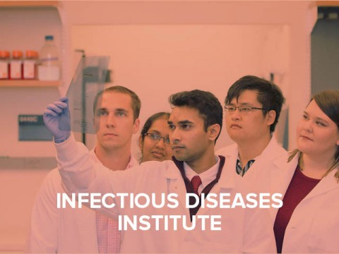 Infectious Diseases Institute button