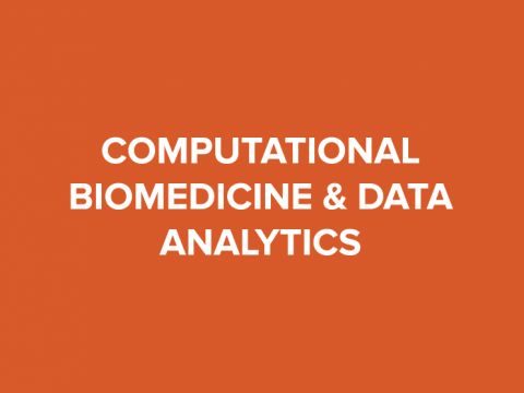 computational biomedicine and data analytics button