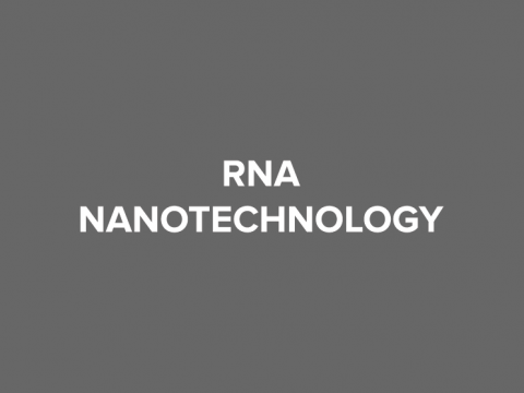 rna nanotechnology button