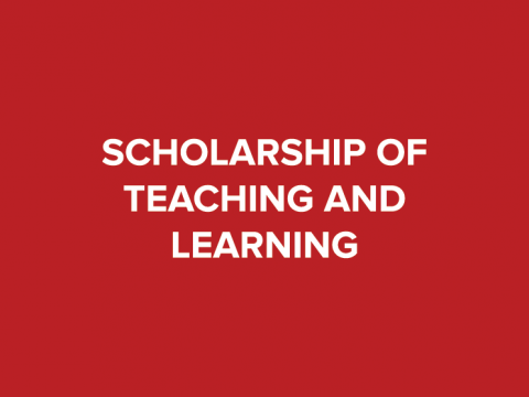 scholarship of teaching and learning button